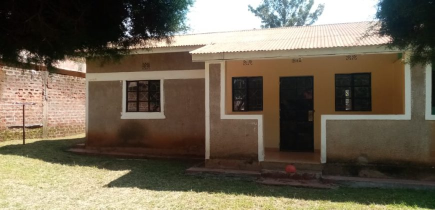 Cozy Houses For Rent In Bungoma (2&3BR)