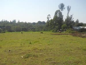 4 Acres Of Land For Sale In Bungoma 1