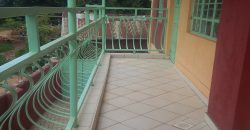 12 Apartments for rent in Bungoma (spacious)