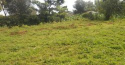 Plot For Sale In Milimani