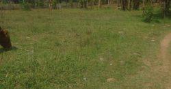 3 Plots For Sale in Bungoma (hot and prime)