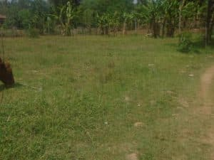 3 Plots For Sale in Bungoma (hot and prime) 1