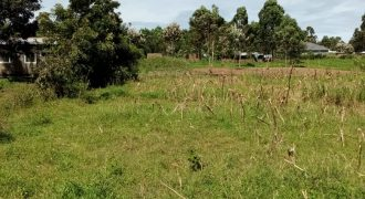 3 Plots For Sale In Bungoma Romima Area