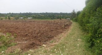 Prime Plots For Sale In Bungoma (3)