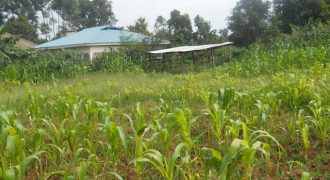 Residential Land For Sale In Bungoma (1 acre)