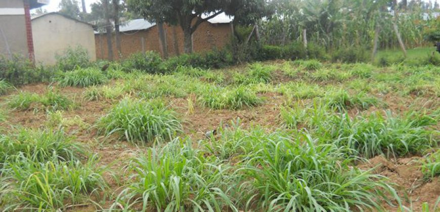 Residential Plot For Sale In Bungoma (1)