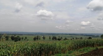 10 ACRES – Prime Agricultural land for Sale in Sikhendu, Kitale