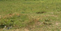 Prime 50 by 100 Residential Plot for Sale in Kanduyi Bungoma County