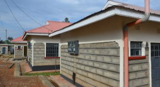New  1 Bedroom Houses for Rent in Bungoma Sinoko Estate