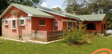 3 Bedroom House For Rent In Bungoma (Affordable)