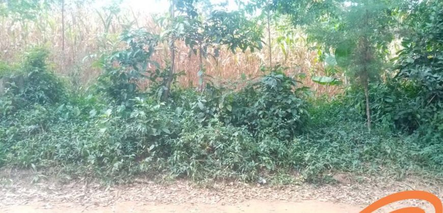 Commercial-Residential Plot for Sale in Bungoma (1)
